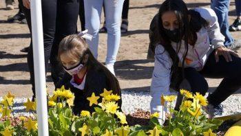Día Mundial en recuerdo de las Víctimas de Accidentes Viales